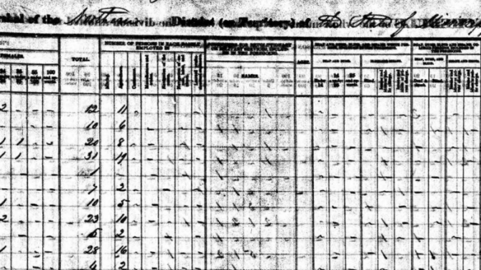 What a Slave Census Can Tell Us